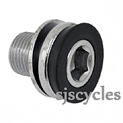 Race Face Crank Bolt